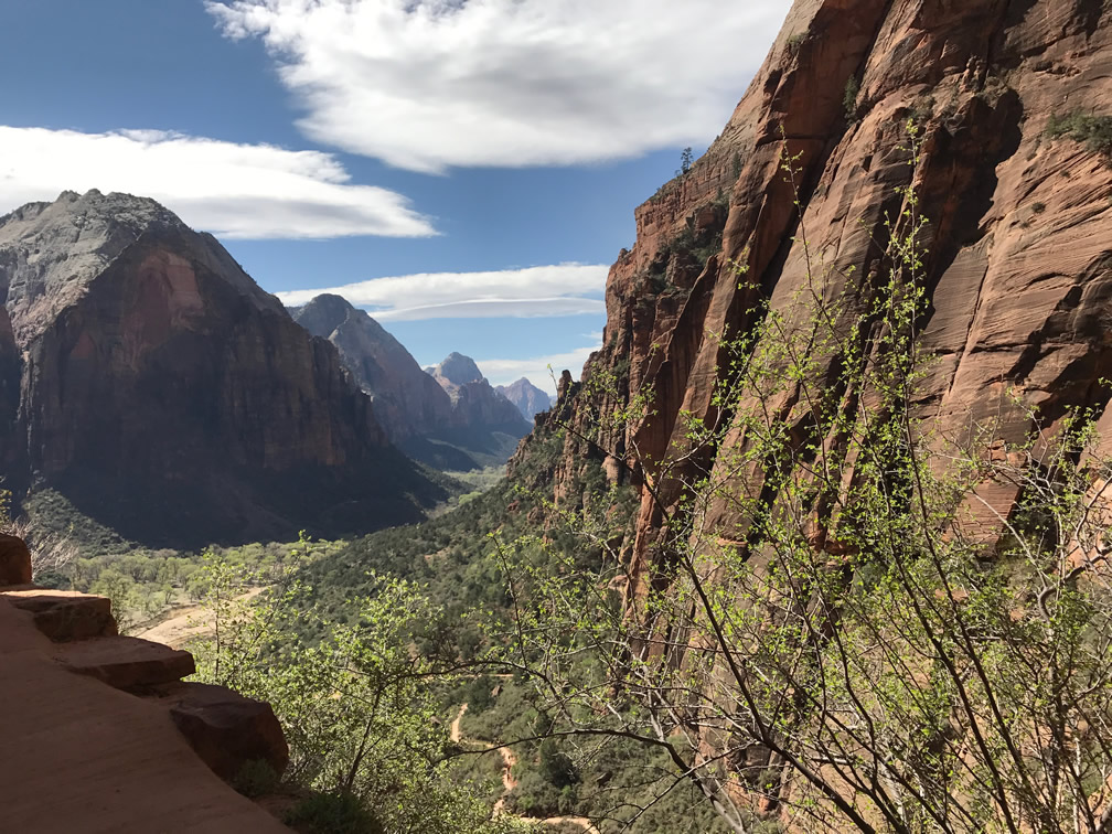 Zion National Park from Angels Landing Trail